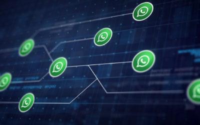 Whatsapp Business, así puede ayudar a tu negocio